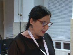 Madžarščina v slovenski literaturi