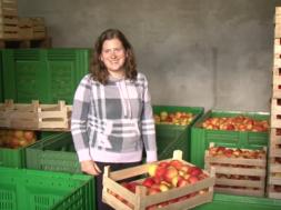 Težave slovenskih sadjarjev