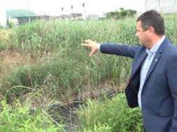 Izpust smrdeče snovi iz bioplinarne v potok