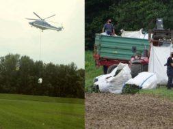 Odvoz konoplje s policijskim helikopterjem