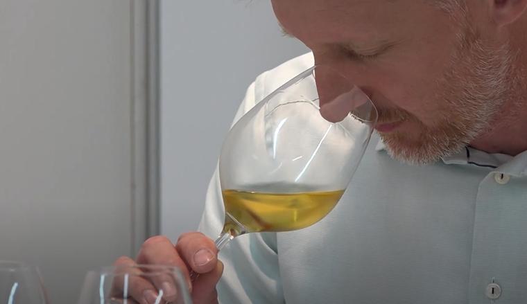 Ocenjevanje vin